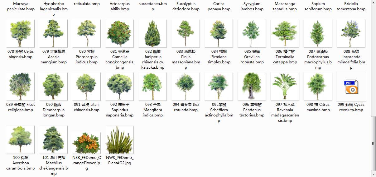 手绘植物立面图 103个bmp树素材