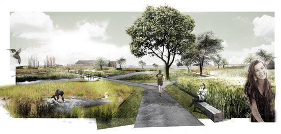 Vlaspark-Kuurne-Delva-landscape-Architects-Plus-Office-Zuiverend-park-fytoremedi.jpg
