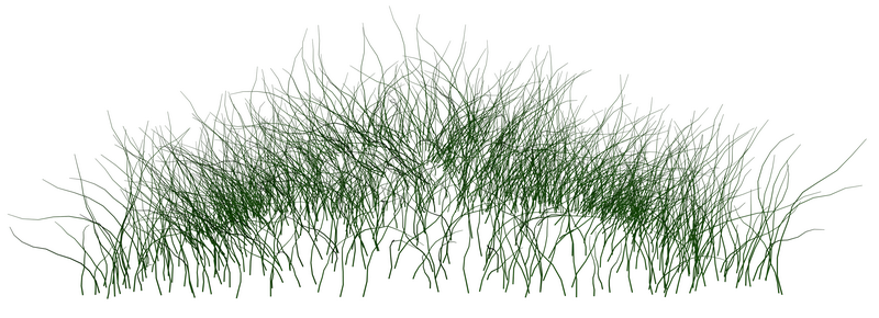 grass_02_png_by_gd08-d33gikn_调整大小.png