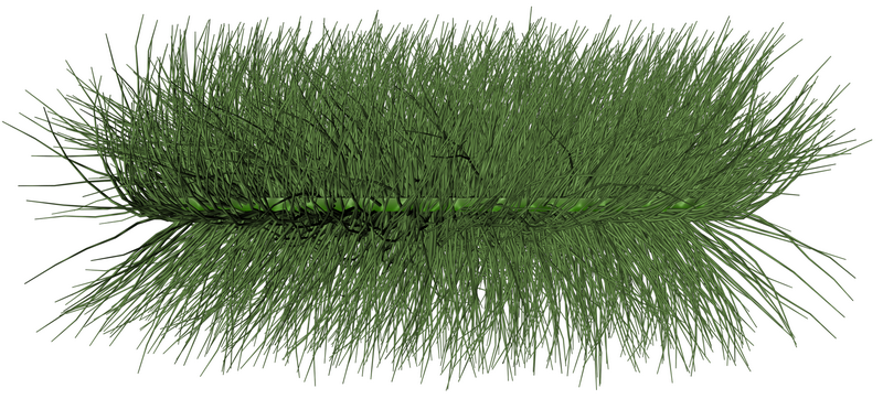 grass_01_png_by_gd08-d33gf2t_调整大小.png
