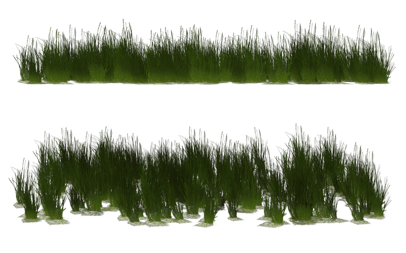 grass_clumps_17_by_wolverine041269-d65c7dx_调整大小.png